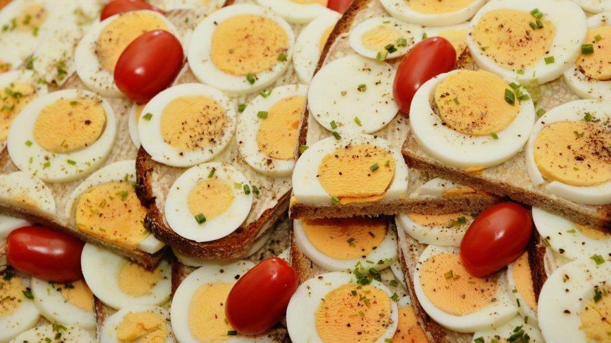 健康的に痩せたいなら読んで!食べるから使うカロリーがある。